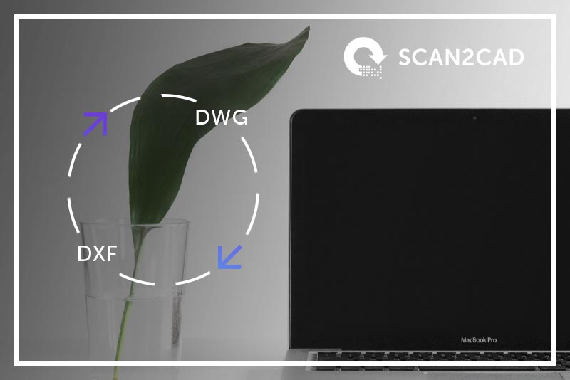 Ultimate Guide Convert DWG to DXF