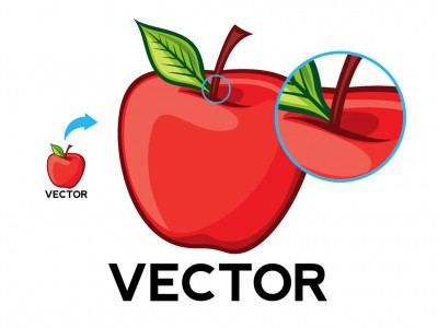 Vector image example