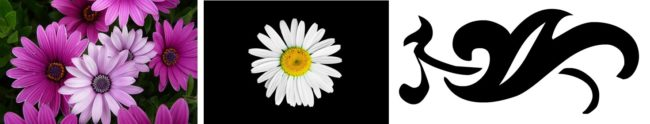 If you want to trace an outline of the the flower, the left-most image is not suitable. The middle one is slightly more suitable, but go for the right-most image